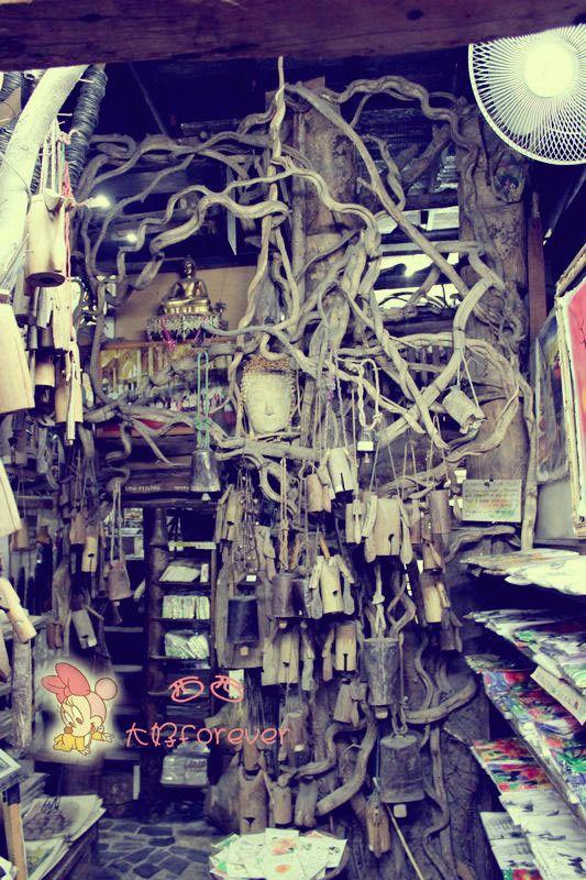 奇特的小店,都是树藤缠绕,不过晚上进去有点害怕