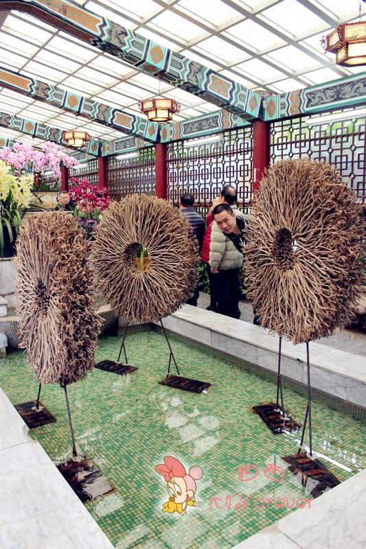 园艺展览馆,欧式花园