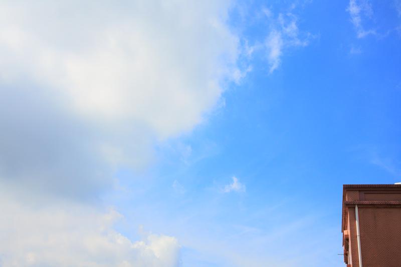 DSC_6181_副本.jpg