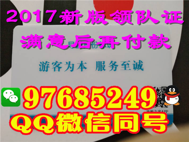 山西省2017年新版领队证模板