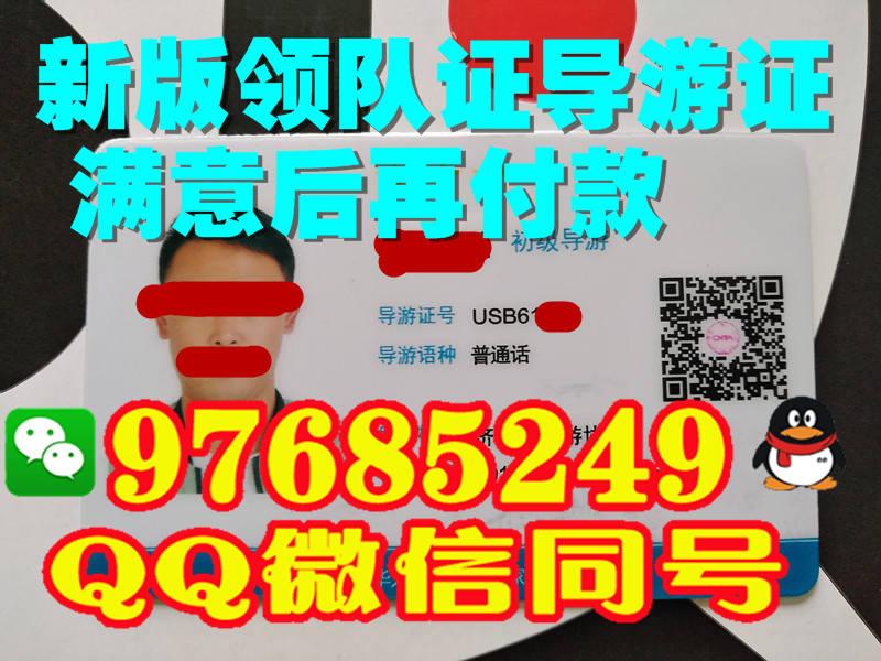 天津市2017年新版领队证样子