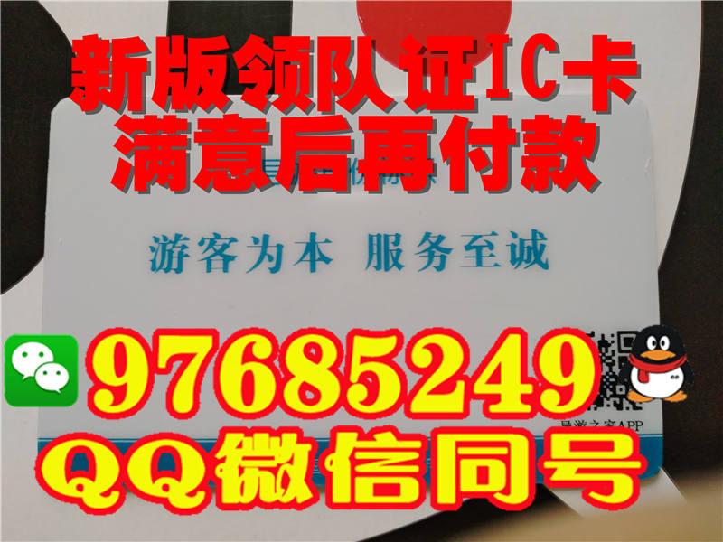 台湾领队证样子